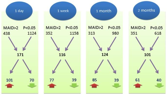 Glatiramer acetate treatment effects on gene expression in