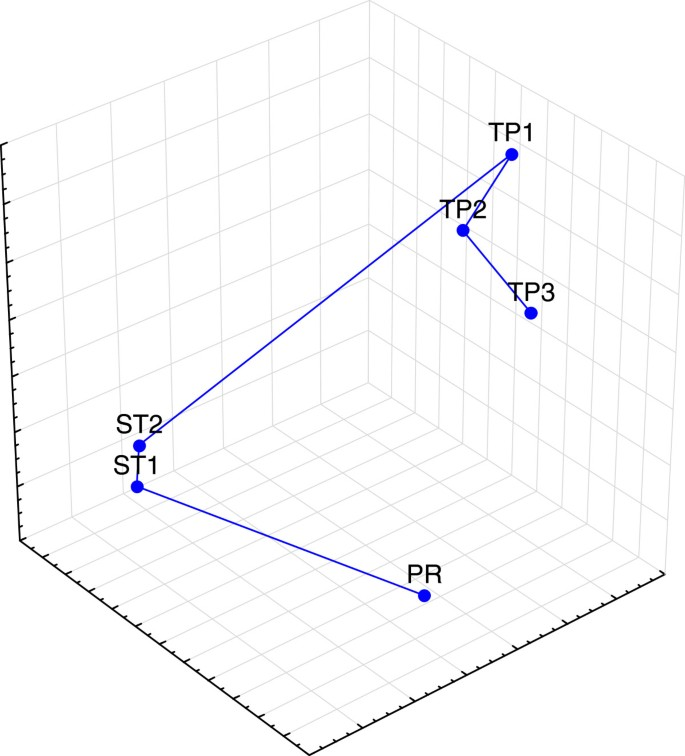 A vector-free ECG interpretation with P, QRS & T waves as unbalanced