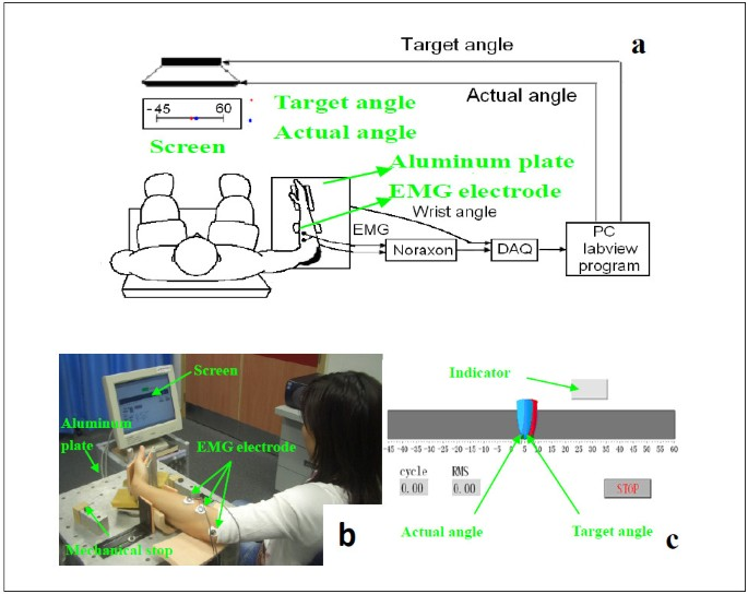 Myoelectrically controlled wrist robot for stroke