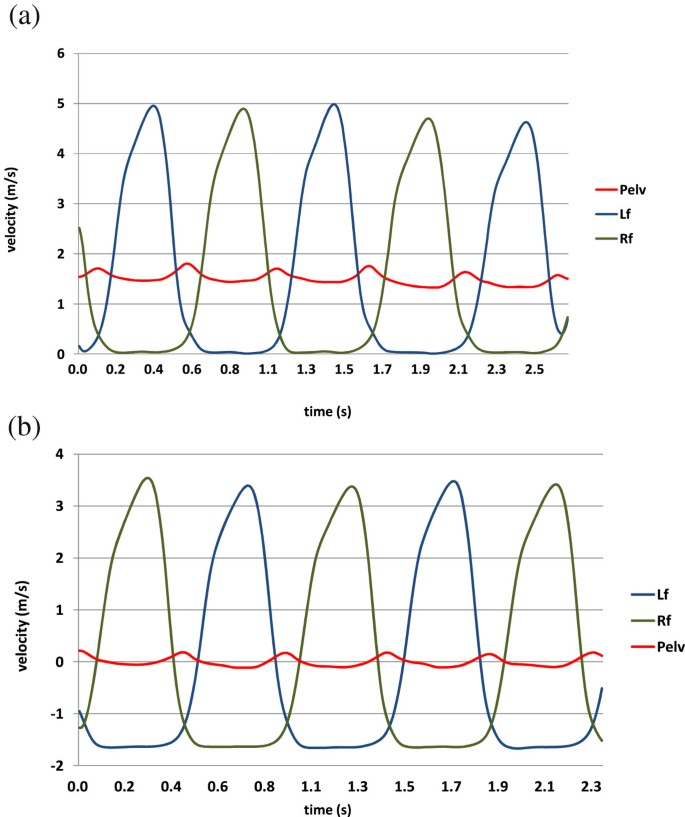 A novel walking speed estimation scheme and its application