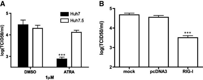 In vitro inhibition of mumps virus by retinoids | Virology Journal