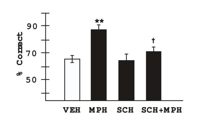 Methylphenidate improves prefrontal cortical cognitive function