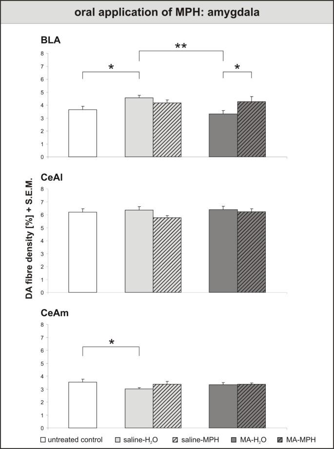 Influence of methylphenidate on brain development – an update of