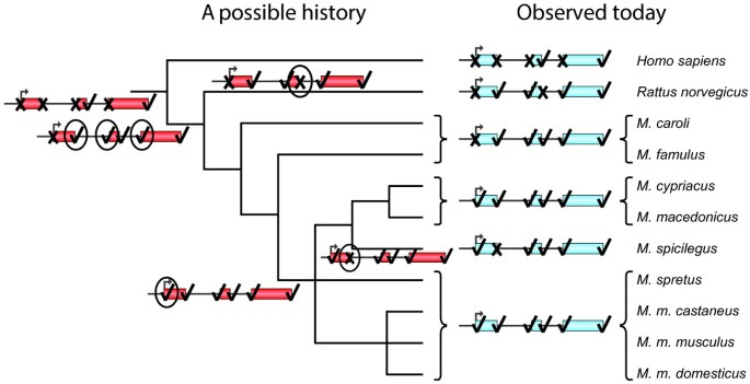Interaction-based evolution: how natural selection and nonrandom