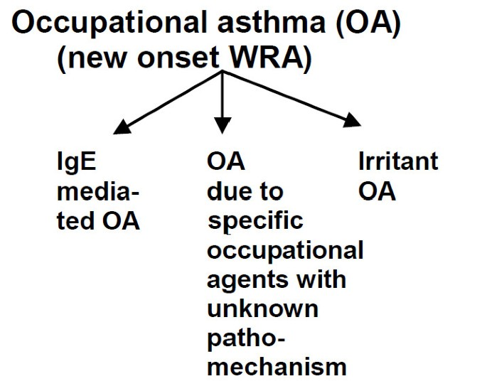 Bronchial asthma and COPD due to irritants in the workplace - an