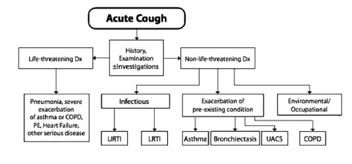Cough management: a practical approach | Cough | Full Text