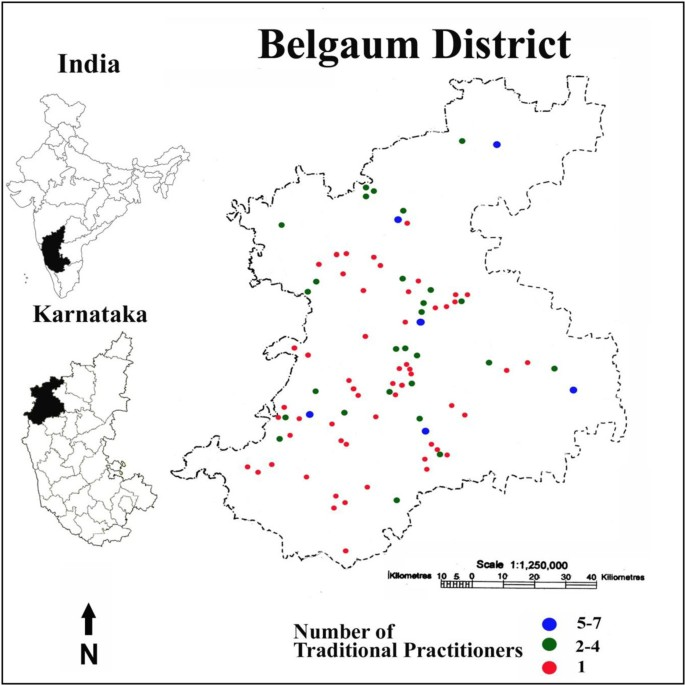 Non-codified traditional medicine practices from Belgaum