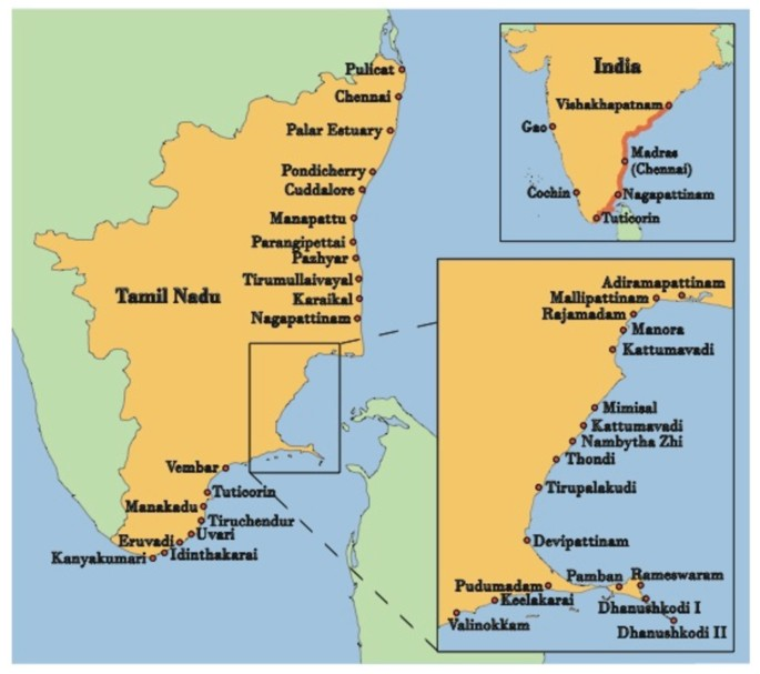 Local Knowledge and Conservation of Seagrasses in the Tamil
