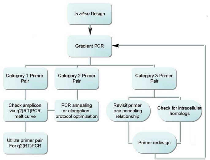 A plastome primer set for comprehensive quantitative real