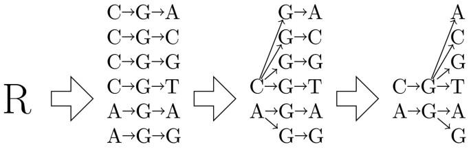 Back-translation for discovering distant protein homologies