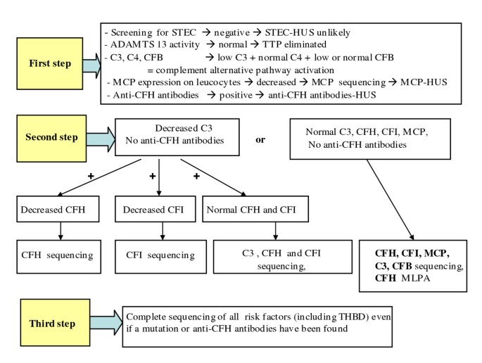 Atypical hemolytic uremic syndrome | Orphanet Journal of Rare