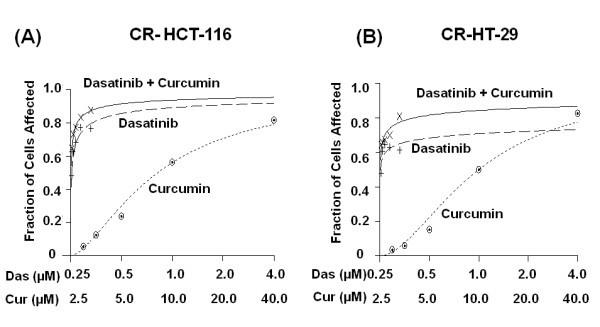 Combination Of Dasatinib And Curcumin Eliminates Chemo Resistant Colon Cancer Cells Springerlink