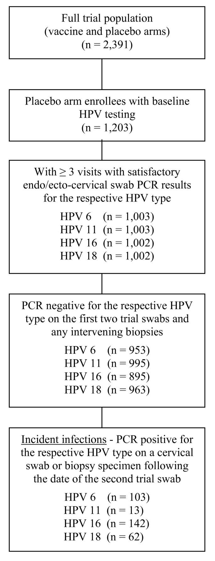 papilloma virus 6 11