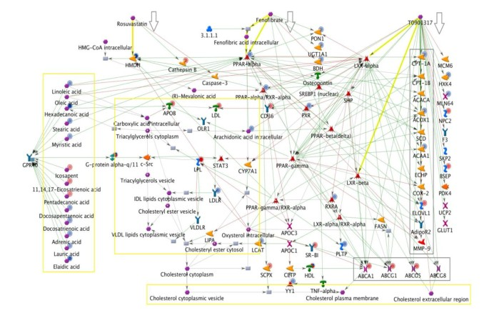 A Systems Biology Strategy for Predicting Similarities and