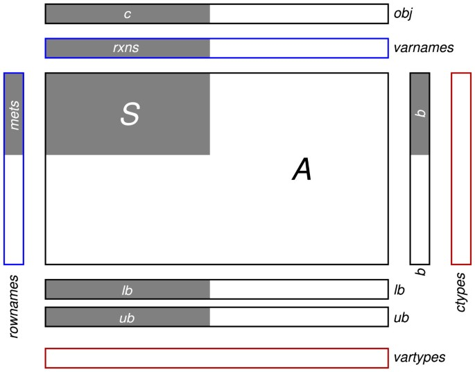 TIGER: Toolbox for integrating genome-scale metabolic models