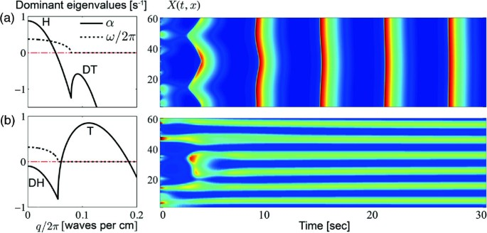 Simulations of pattern dynamics for reaction-diffusion systems via