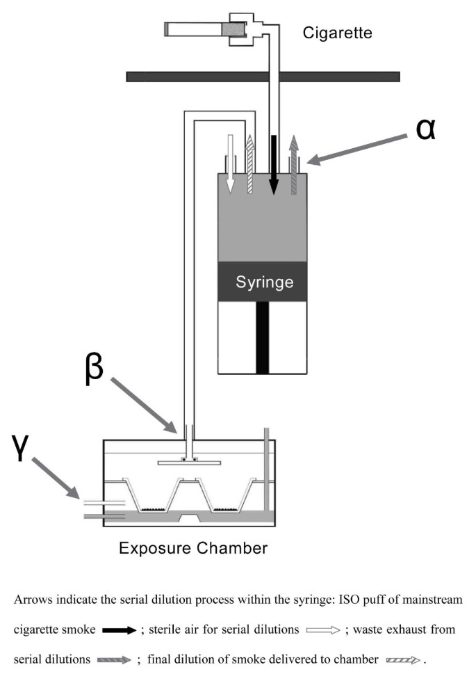 Assessment of an in vitro whole cigarette smoke exposure