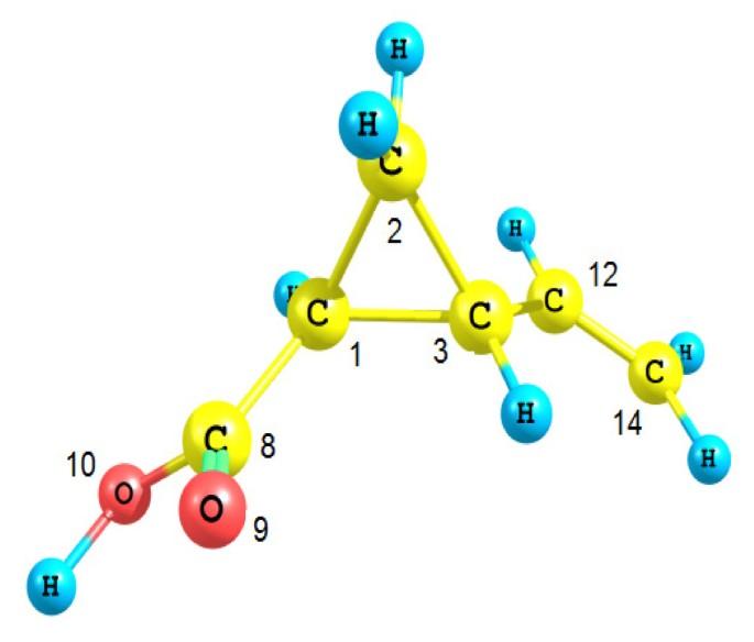 Understanding the decomposition reaction mechanism of