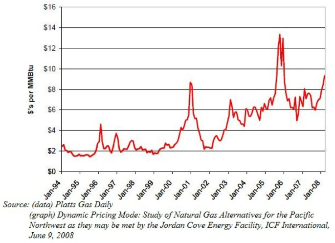 The role of natural gas as a primary fuel in the near future