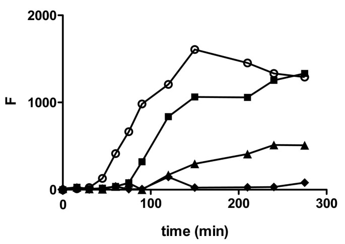 Soluble aggregates of the amyloid-β peptide are trapped by