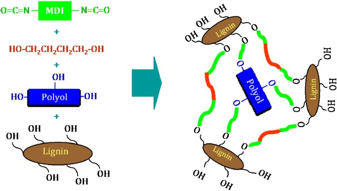 Effect of replacing polyol by organosolv and kraft lignin on the