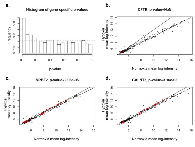 Correlation of microRNA levels during hypoxia with predicted