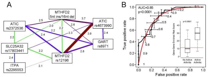 Risk score modeling of multiple gene to gene interactions