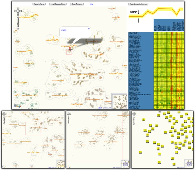 What google maps can do for biomedical data dissemination