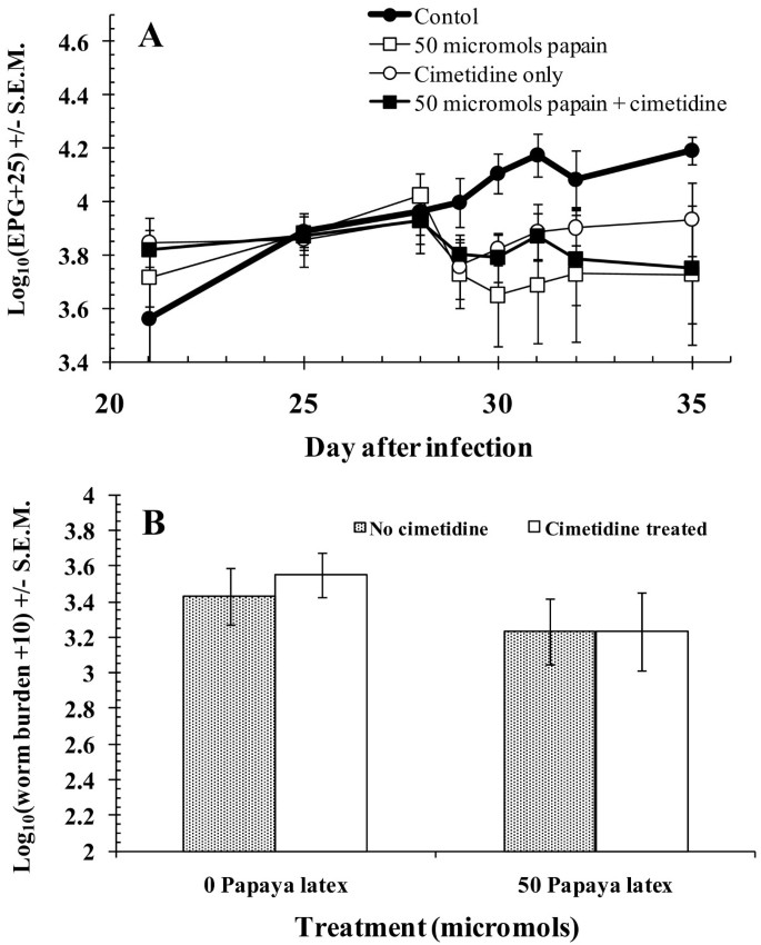 Oral dosing with papaya latex is an effective anthelmintic