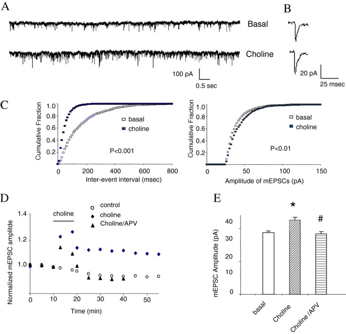 α7nAchR/NMDAR coupling affects NMDAR function and object