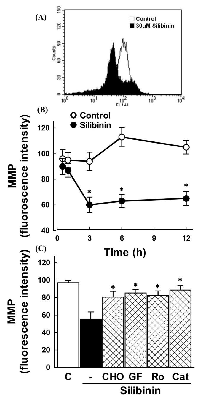 120 Chan Porn silibinin induces apoptosis via calpain-dependent aif