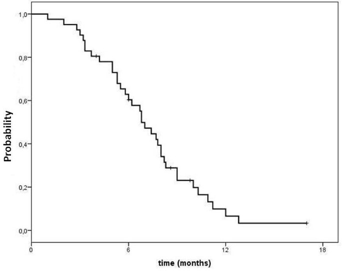 Gemcitabine Oxaliplatin Gemox As Salvage Treatment In Pretreated Epithelial Ovarian Cancer Patients Journal Of Experimental Clinical Cancer Research Full Text