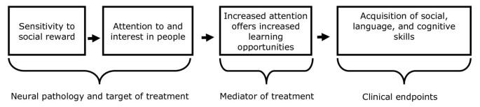 Social attention: a possible early indicator of efficacy in