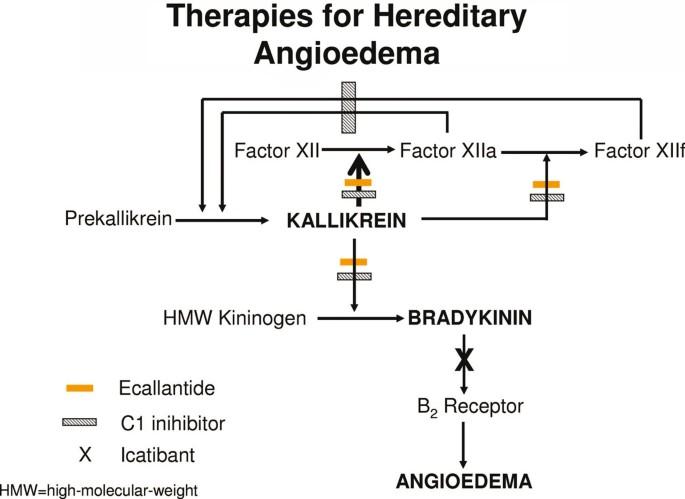 Hereditary Angioedema Therapy Kallikrein Inhibition And