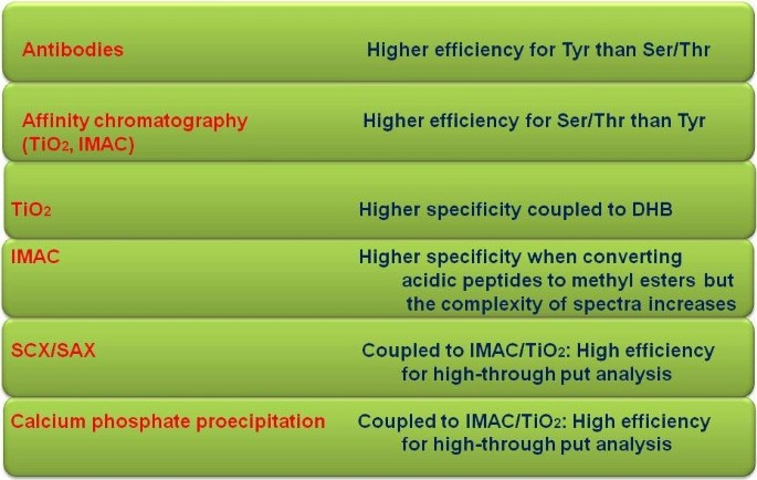 Functional phosphoproteomic mass spectrometry-based