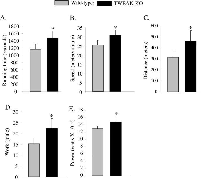 TWEAK promotes exercise intolerance by decreasing skeletal