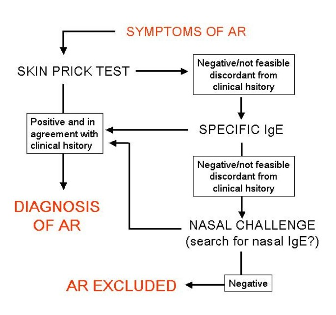 Diagnostic tools in Rhinology EAACI position paper | Clinical and