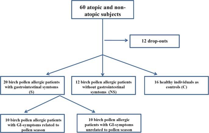 Intestinal allergic inflammation in birch pollen allergic