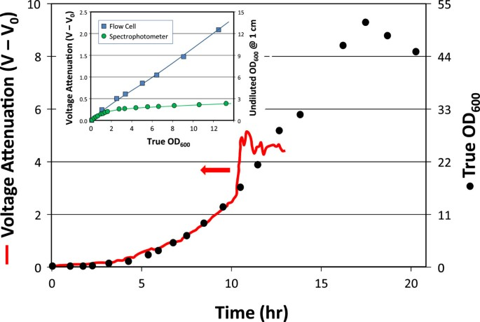 Improving accuracy of cell and chromophore concentration