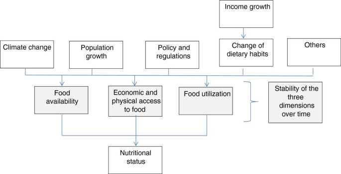 What are the socio-economic impacts of genetically modified
