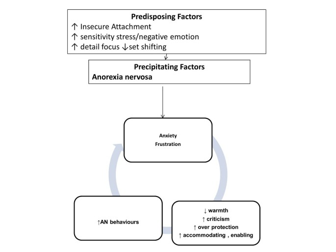 The cognitive-interpersonal maintenance model of anorexia nervosa