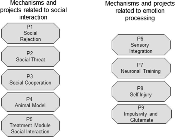 Mechanisms of disturbed emotion processing and social interaction in