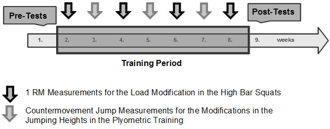 Metastability in plyometric training on unstable surfaces: a pilot
