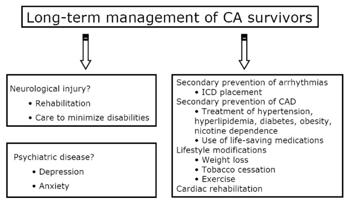 Postcardiac arrest syndrome: from immediate resuscitation to