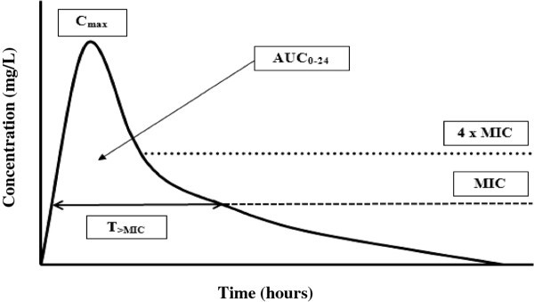 Continuous beta-lactam infusion in critically ill patients