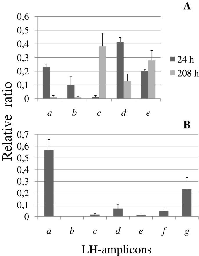 Characterization by length heterogeneity (LH)-PCR of a hydrogen ...
