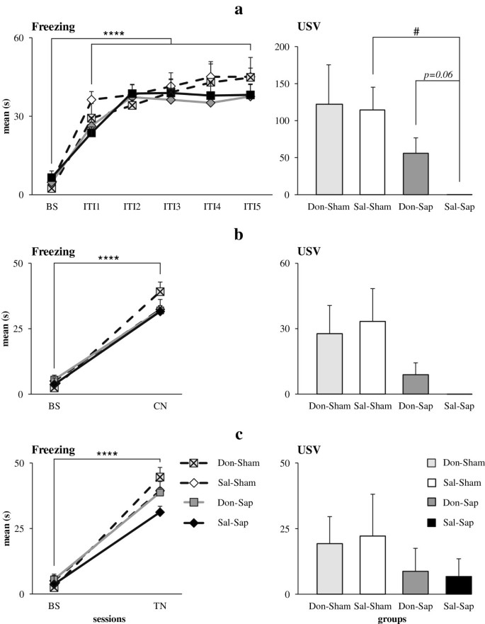 Neuroprotective effects of donepezil against cholinergic depletion