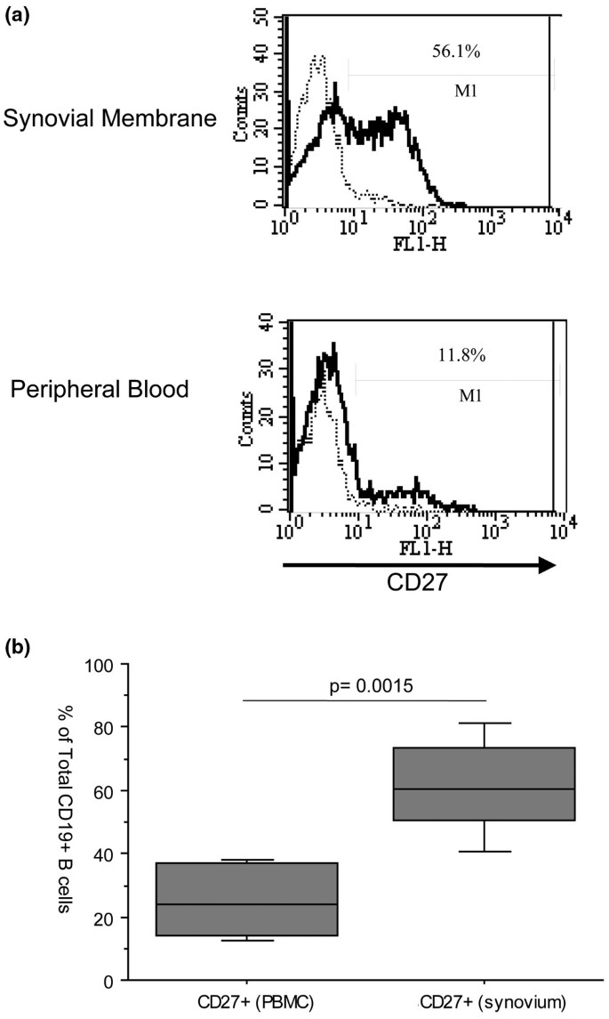 Alterations in peripheral blood memory B cells in patients