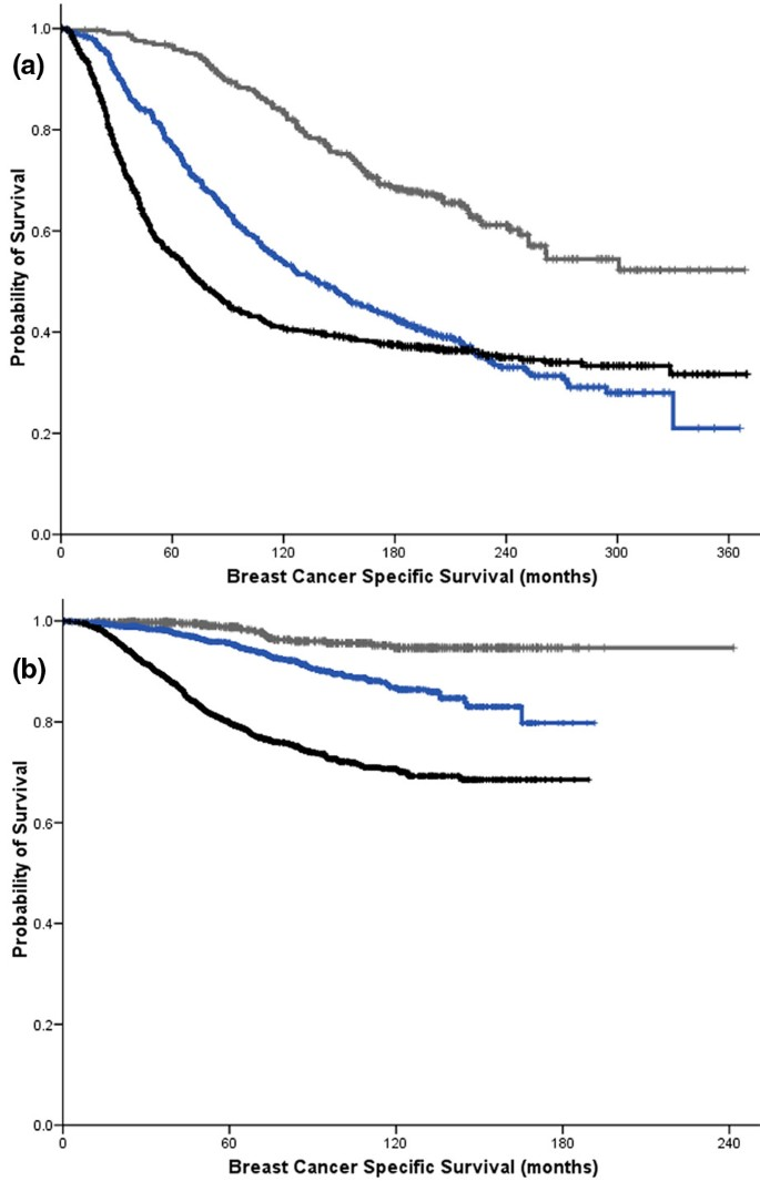 Breast cancer prognostic classification in the molecular era