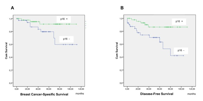 The prognostic significance and value of cyclin D1, CDK4 and